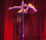 Night Under The Pole Stars Show 2013